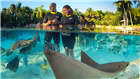 Trainer for a Day at Discovery Cove Orlando