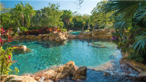 Wind-Away River at Discovery Cove Orlando