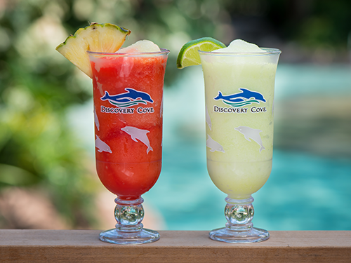 Enjoy unlimited deluxe drinks at Discovery Cove.
