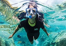 Snorkel with thousands of tropical fish at Discovery Cove